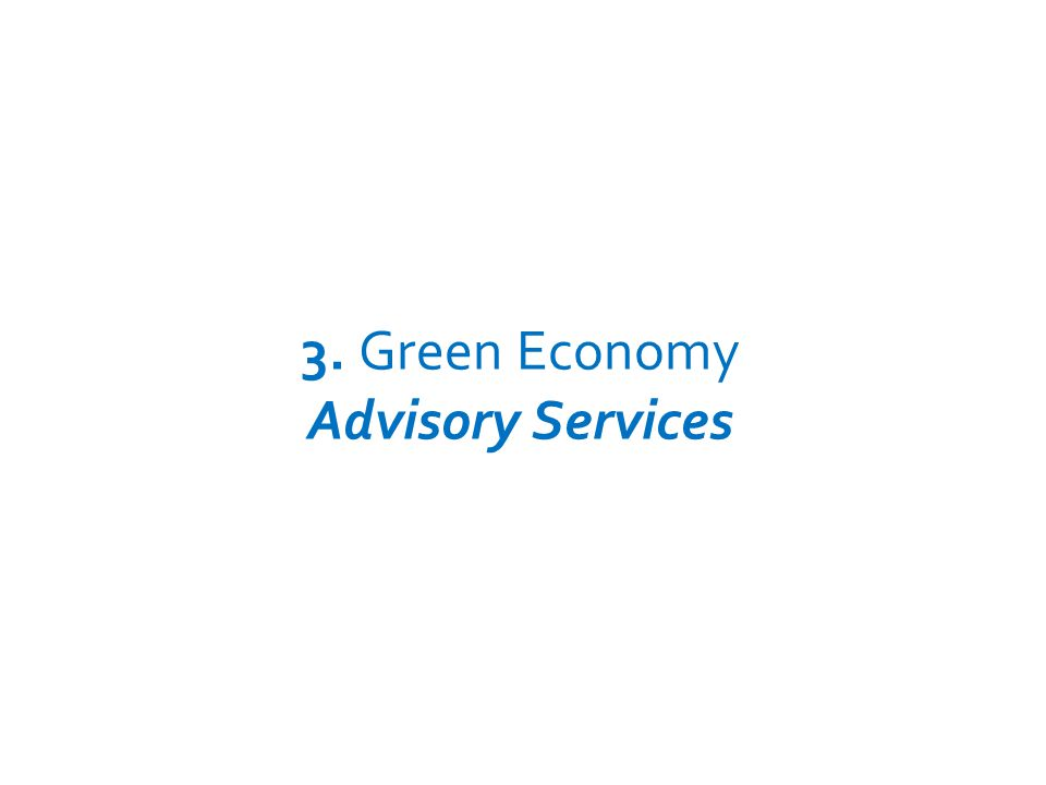 3. Green Economy Advisory Services UNEP – GREEN ECONOMY INITIATIVE