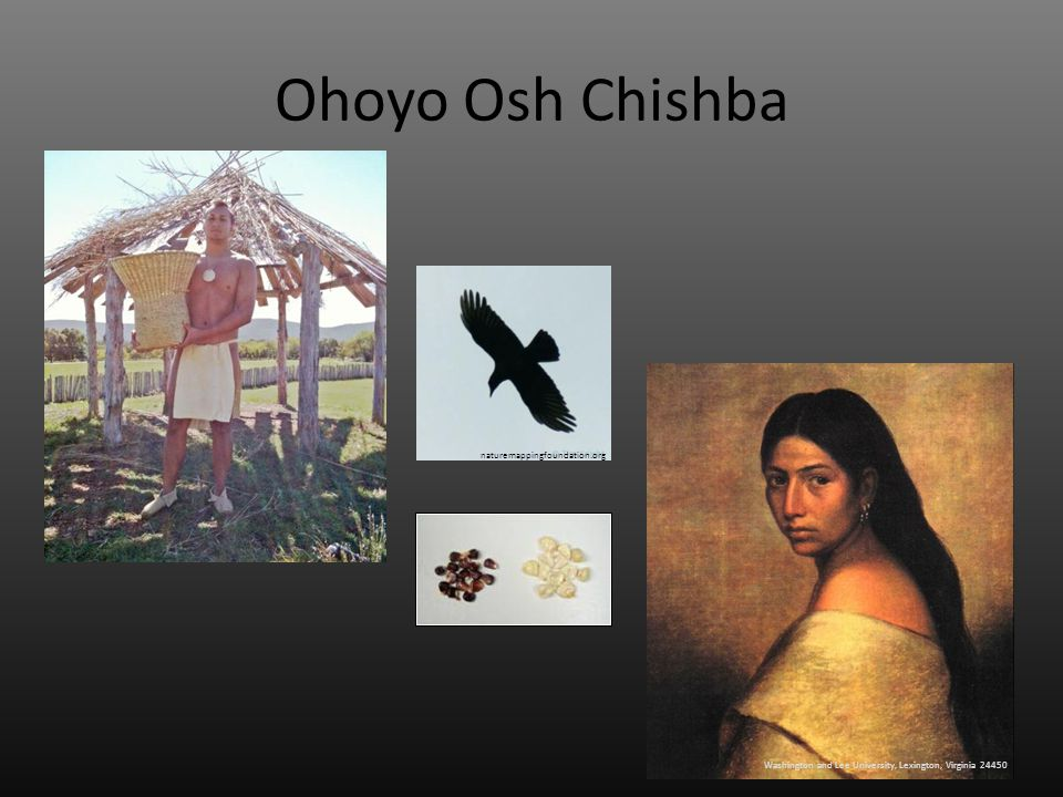 Ohoyo Osh Chishba Washington and Lee University, Lexington, Virginia 24450 naturemappingfoundation.org