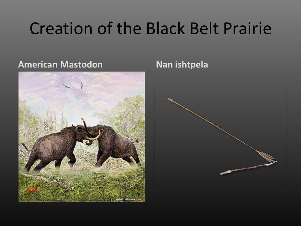 Creation of the Black Belt Prairie American MastodonNan ishtpela smithsonianmag.com