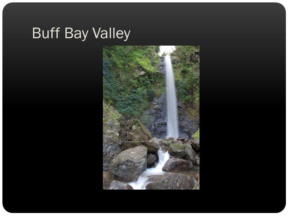 Buff Bay Valley