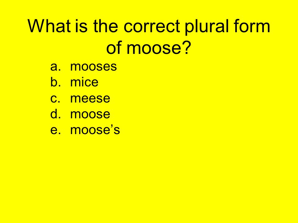 What is the correct plural form of moose? a.mooses b.mice c.meese d.moose e.mooses