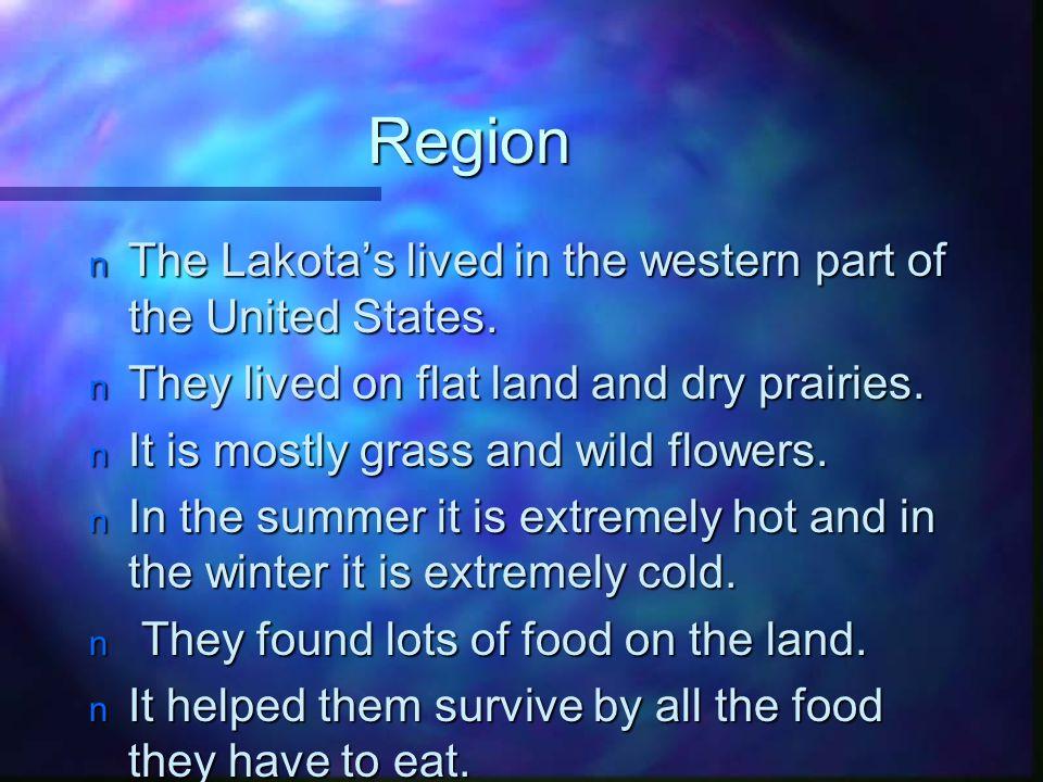 The Lakota Shelter