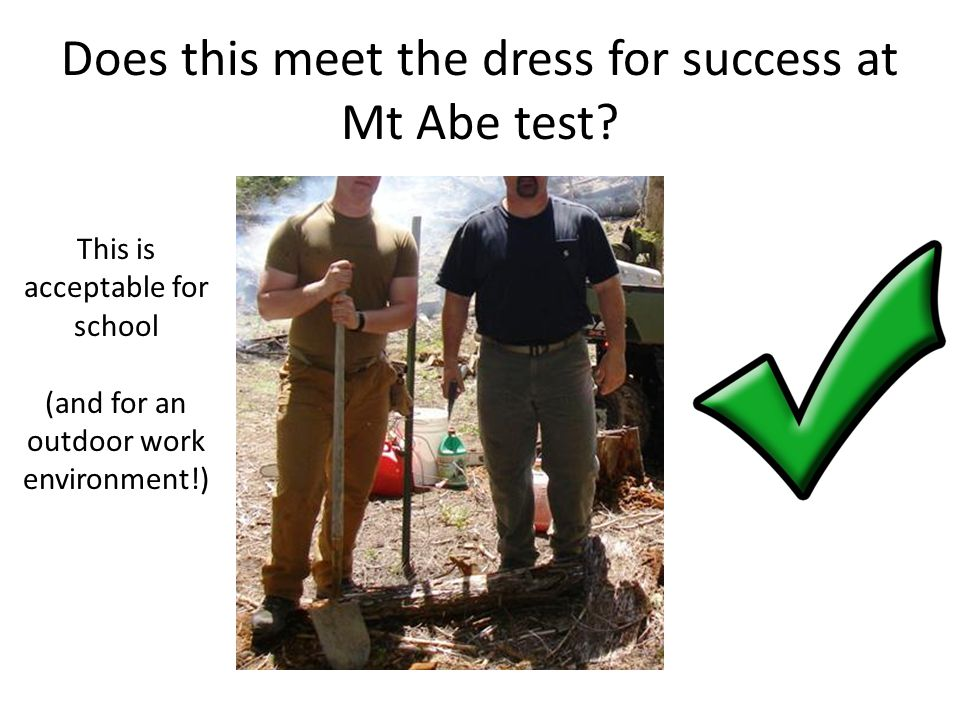 Does this meet the dress for success at Mt Abe test.