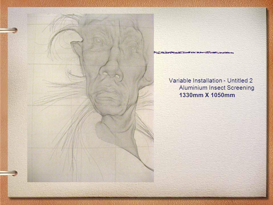 Variable Installation - Untitled 2 Aluminium Insect Screening 1330mm X 1050mm