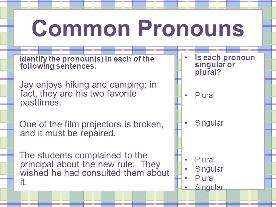 Identify the pronoun(s) in each of the following sentences.