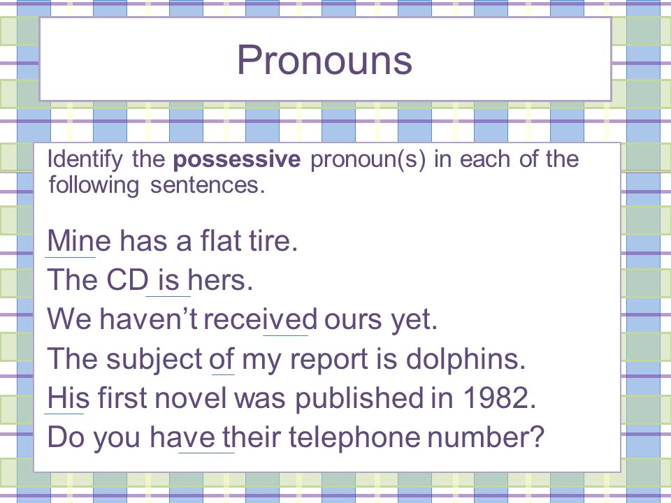 Pronouns Identify the possessive pronoun(s) in each of the following sentences.