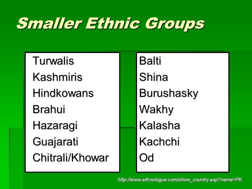 Smaller Ethnic Groups TurwalisKashmirisHindkowansBrahuiHazaragiGuajaratiChitrali/KhowarBaltiShinaBurushaskyWakhyKalashaKachchiOd http://www.ethnologue
