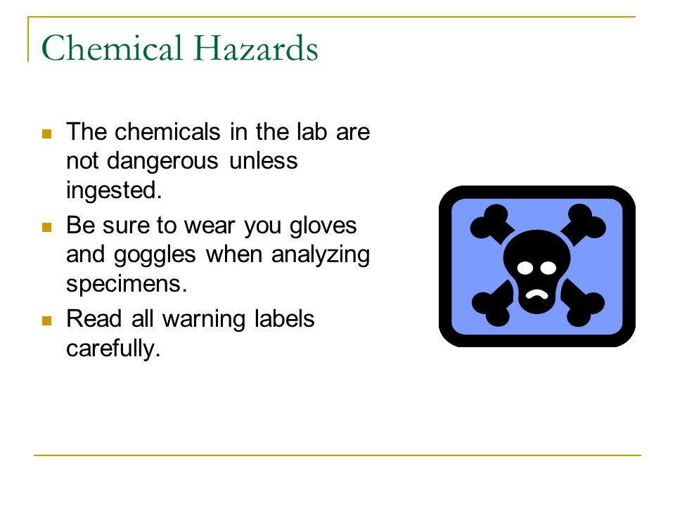 Chemical Hazards The chemicals in the lab are not dangerous unless ingested.
