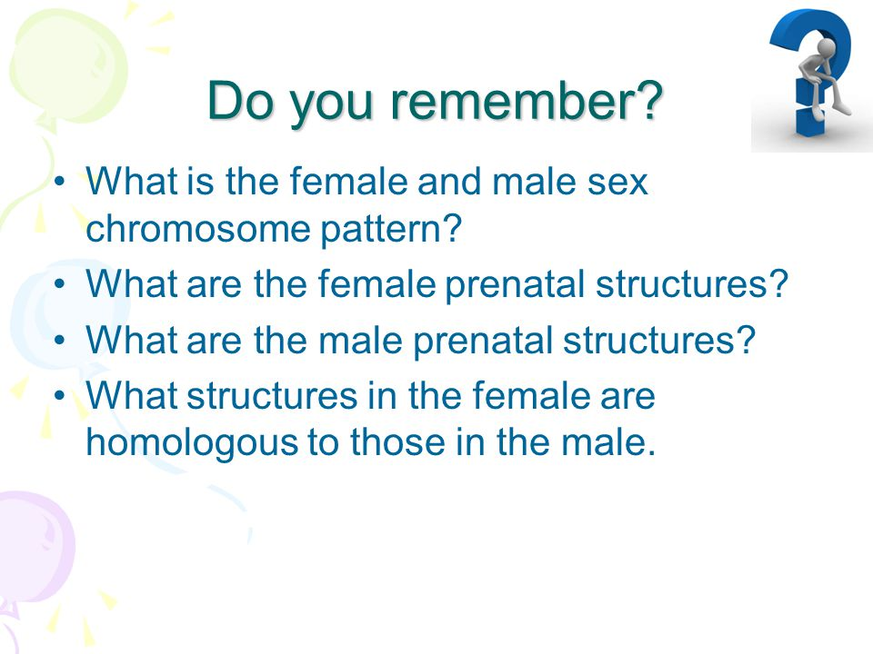 Do you remember.What is the female and male sex chromosome pattern.