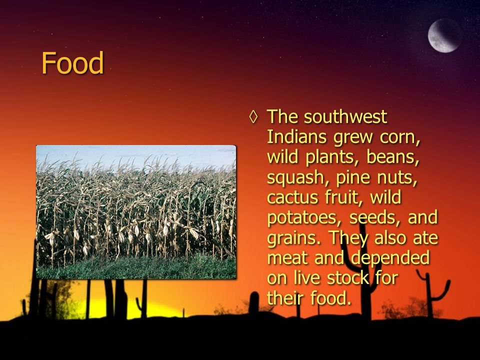 Food The southwest Indians grew corn, wild plants, beans, squash, pine nuts, cactus fruit, wild potatoes, seeds, and grains. They also ate meat and de