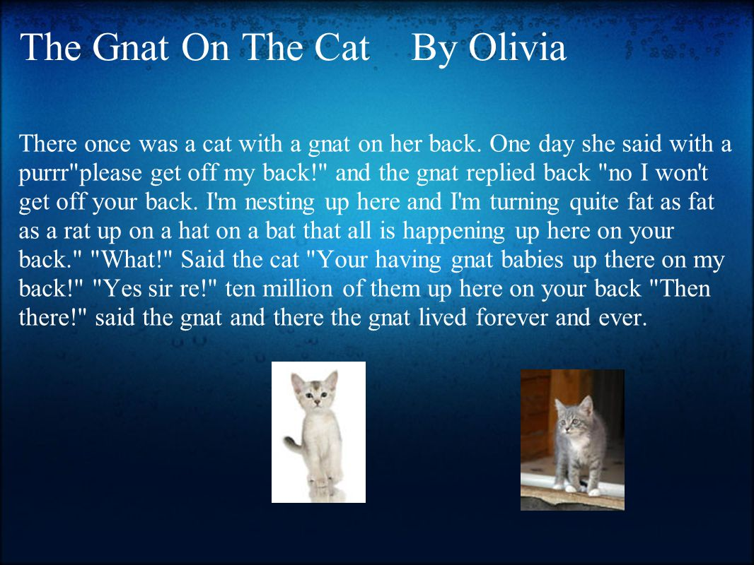 The Gnat On The Cat By Olivia There once was a cat with a gnat on her back. One day she said with a purrr