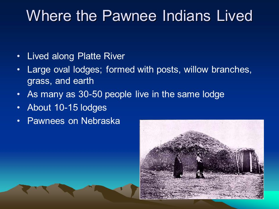 Where the Pawnee Indians Lived Lived along Platte River Large oval lodges; formed with posts, willow branches, grass, and earth As many as 30-50 peopl
