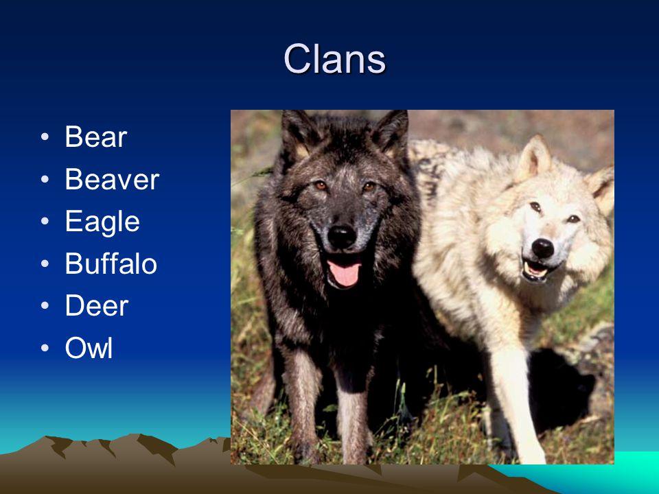 Clans Clans Bear Beaver Eagle Buffalo Deer Owl