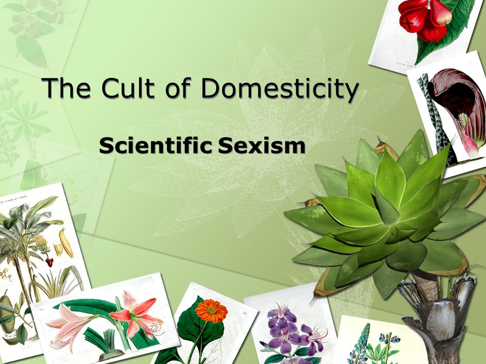 The Cult of Domesticity Scientific Sexism