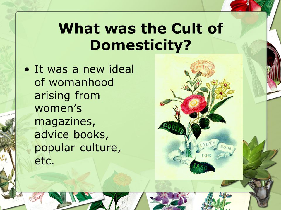 What was the Cult of Domesticity? It was a new ideal of womanhood arising from womens magazines, advice books, popular culture, etc.