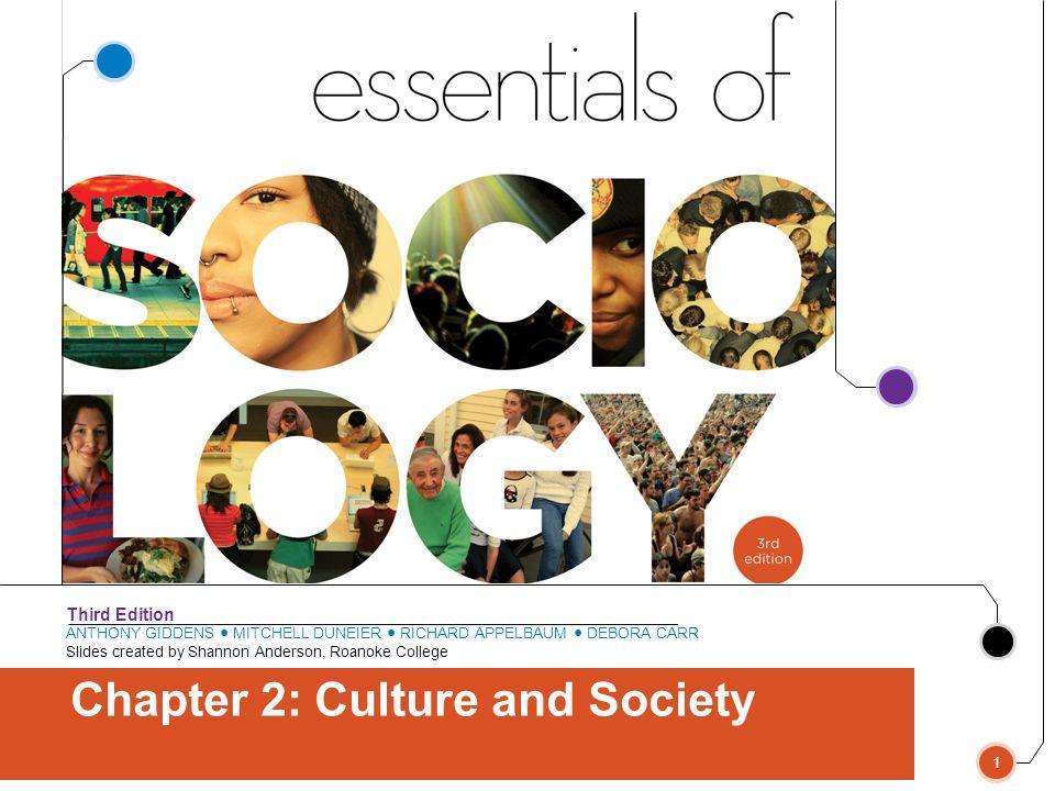 Bocce Essentials Of Sociology, 3rd Edition Copyright © 2011 W.W. Norton & Company