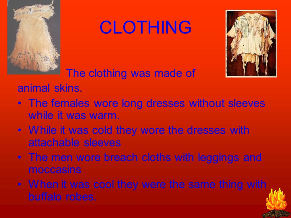 CLOTHING The clothing was made of animal skins.