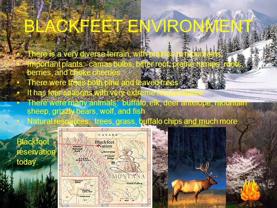 BLACKFEET ENVIRONMENT There is a very diverse terrain, with prairies to mountains.
