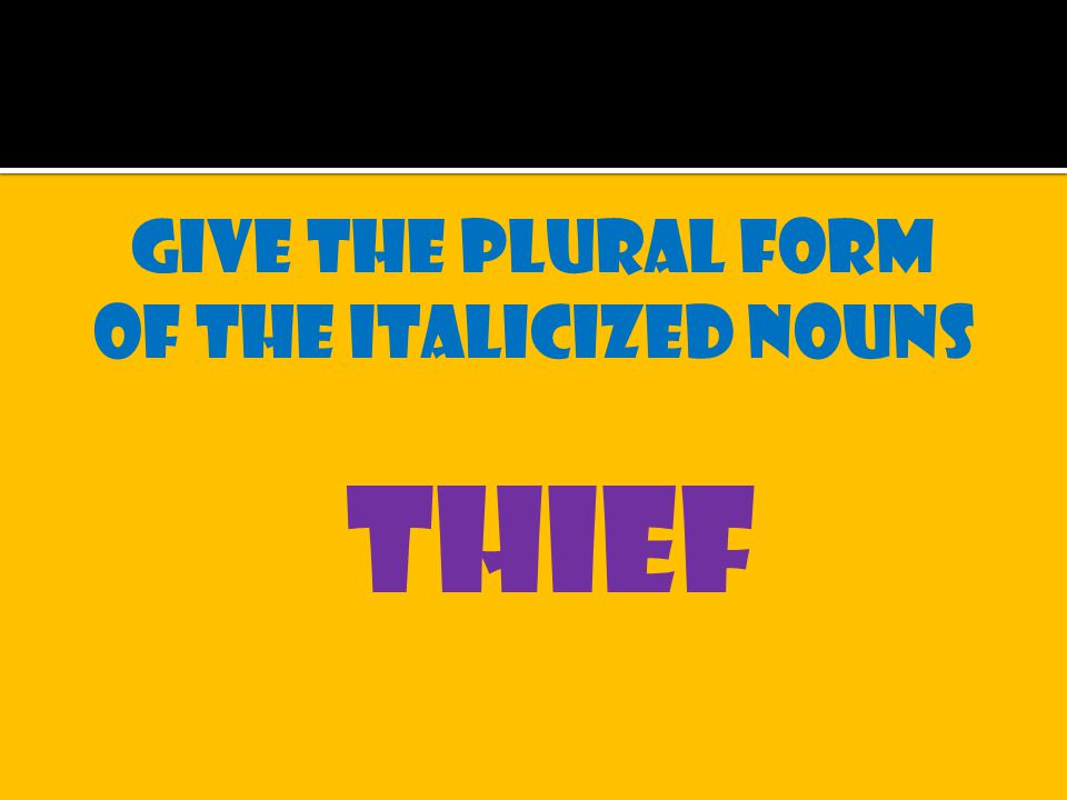 Give the plural form of the italicized nouns thief