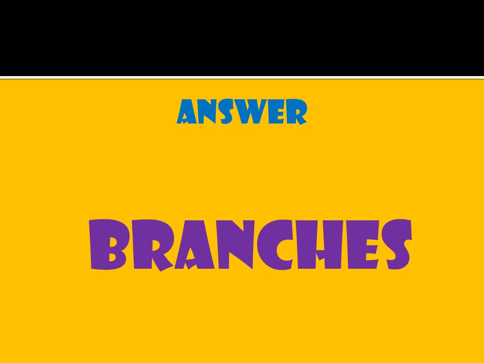 answer branches