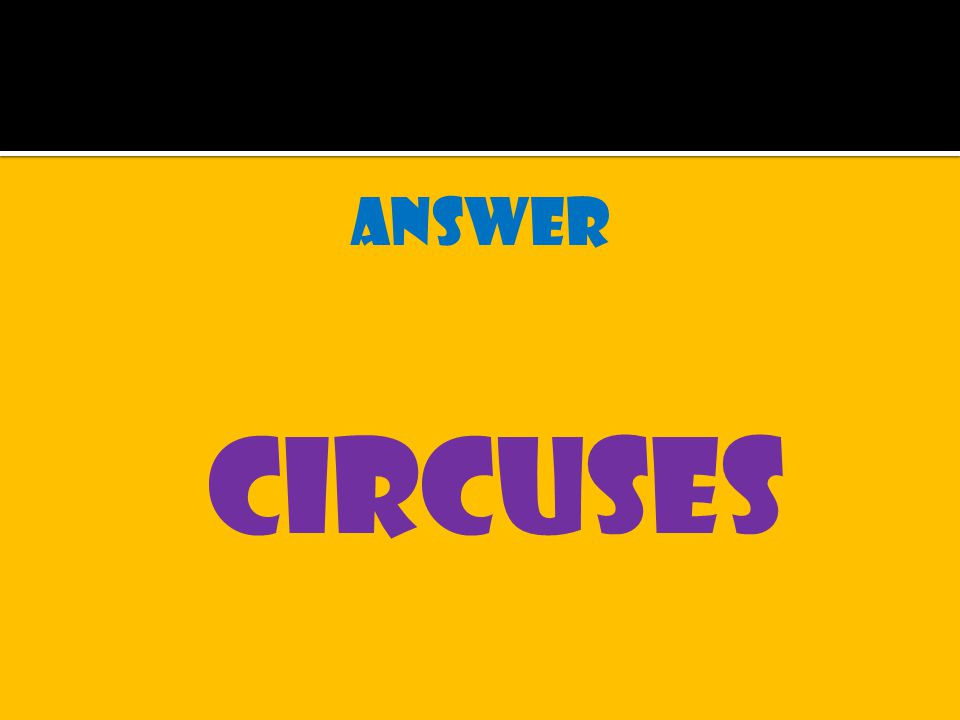 answer circuses