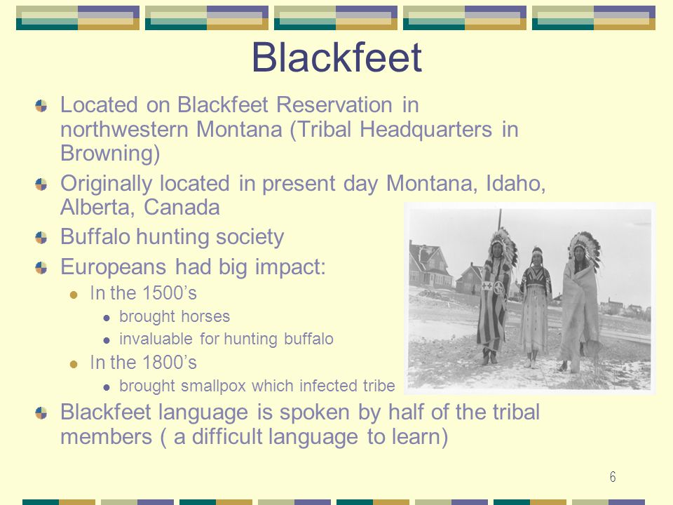 7 Blackfeet Tribe ( located on the Blackfeet Reservation) Blackfeet women owned the tipi wore long deerskin dresses decorated with elk teeth and porcupine quills Blackfeet men were hunters and warriors wore tunics and breechcloths chiefs wore feather headdresses some men wore 3 braids in a topknot painted faces for special occasions used long bows, arrows, clubs, hide shields for hunting and war