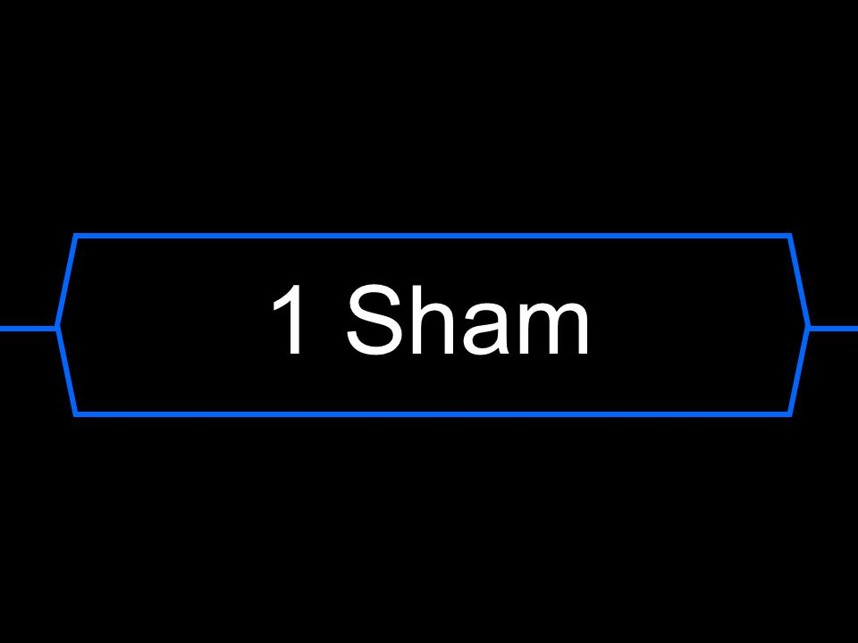 1 Sham