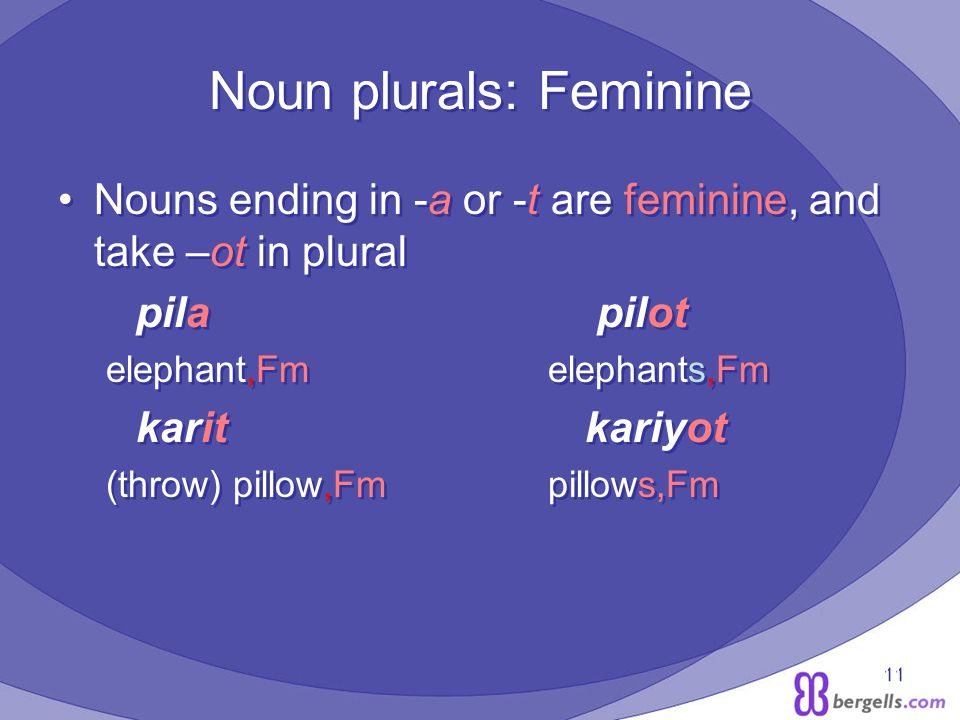 11 Noun plurals: Feminine Nouns ending in -a or -t are feminine, and take –ot in plural pila pilot elephant,Fm elephants,Fm karit kariyot (throw) pillow,Fm pillows,Fm Nouns ending in -a or -t are feminine, and take –ot in plural pila pilot elephant,Fm elephants,Fm karit kariyot (throw) pillow,Fm pillows,Fm