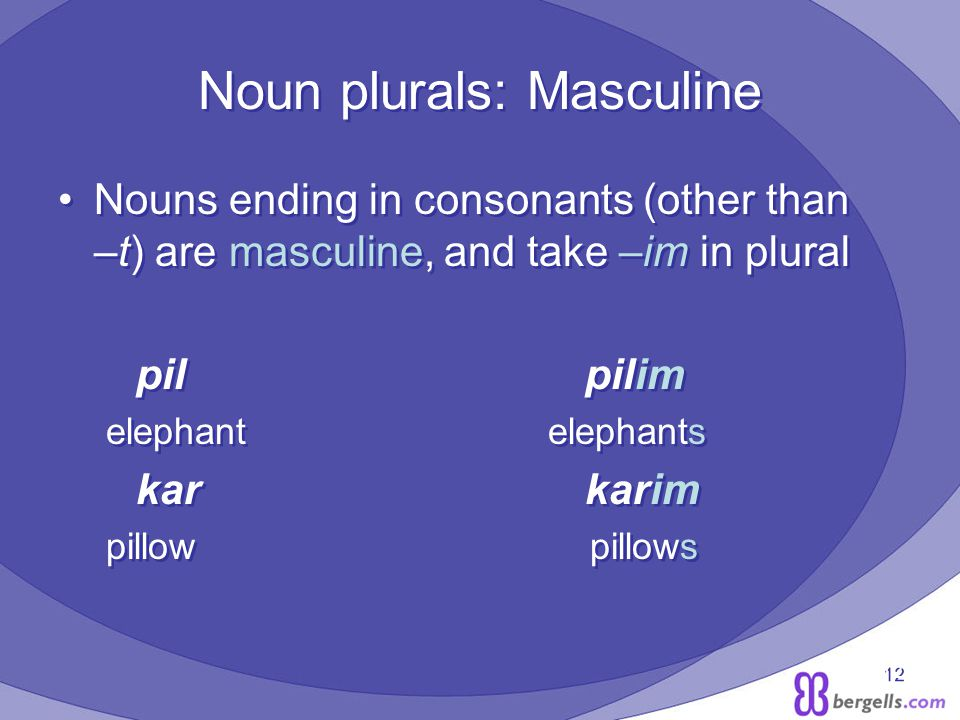 12 Noun plurals: Masculine Nouns ending in consonants (other than –t) are masculine, and take –im in plural pil pilim elephant elephants kar karim pillow pillows Nouns ending in consonants (other than –t) are masculine, and take –im in plural pil pilim elephant elephants kar karim pillow pillows