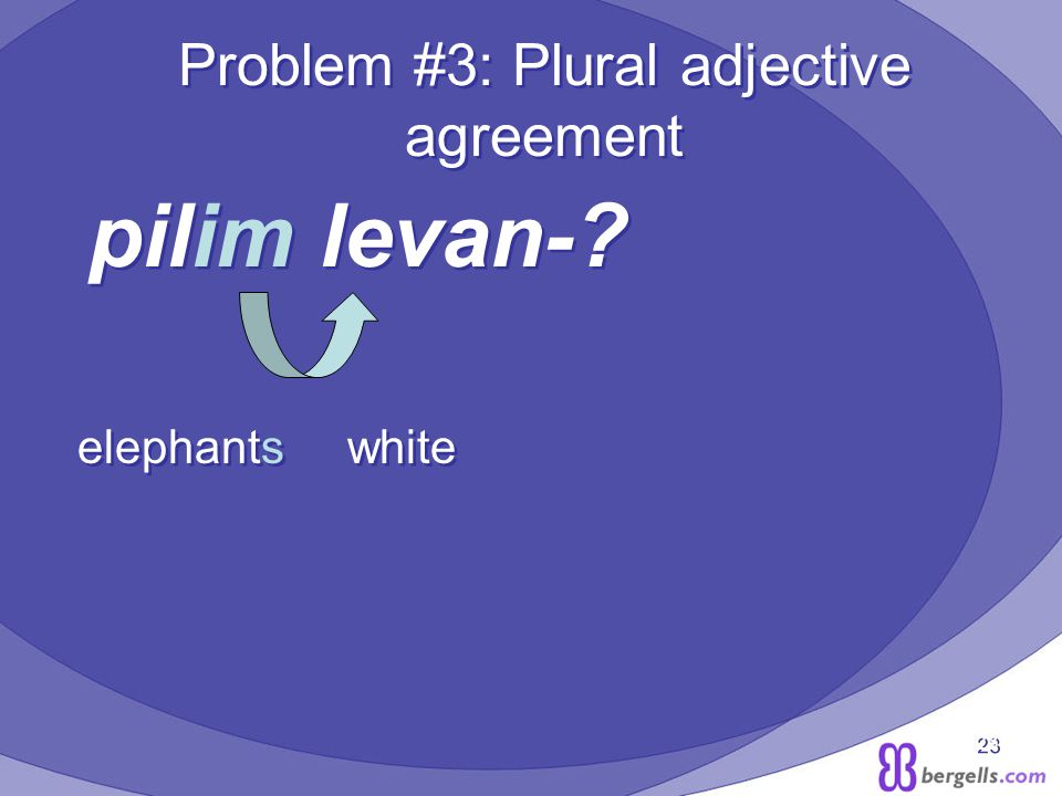 23 Problem #3: Plural adjective agreement pilim levan-.