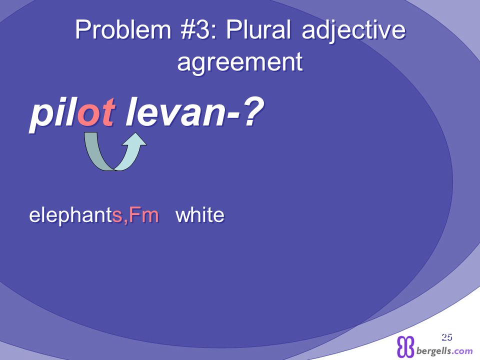 25 Problem #3: Plural adjective agreement pilot levan-.