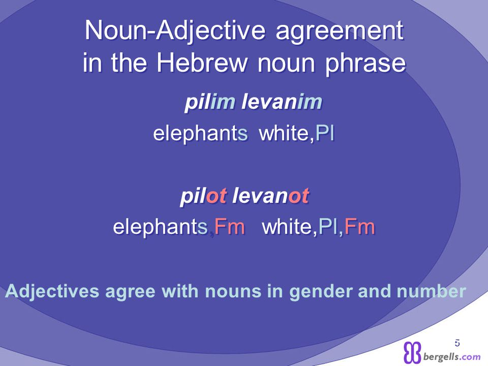 5 Noun-Adjective agreement in the Hebrew noun phrase pilim levanim elephants white,Pl pilot levanot elephants,Fm white,Pl,Fm pilim levanim elephants white,Pl pilot levanot elephants,Fm white,Pl,Fm Adjectives agree with nouns in gender and number