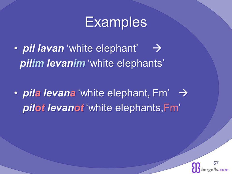 57 Examples pil lavan white elephant pilim levanim white elephants pila levana white elephant, Fm pilot levanot white elephants,Fm pil lavan white elephant pilim levanim white elephants pila levana white elephant, Fm pilot levanot white elephants,Fm