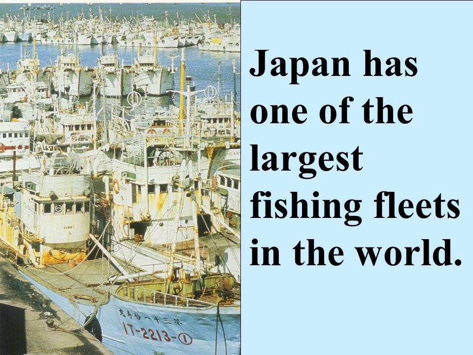 Japan has one of the largest fishing fleets in the world.