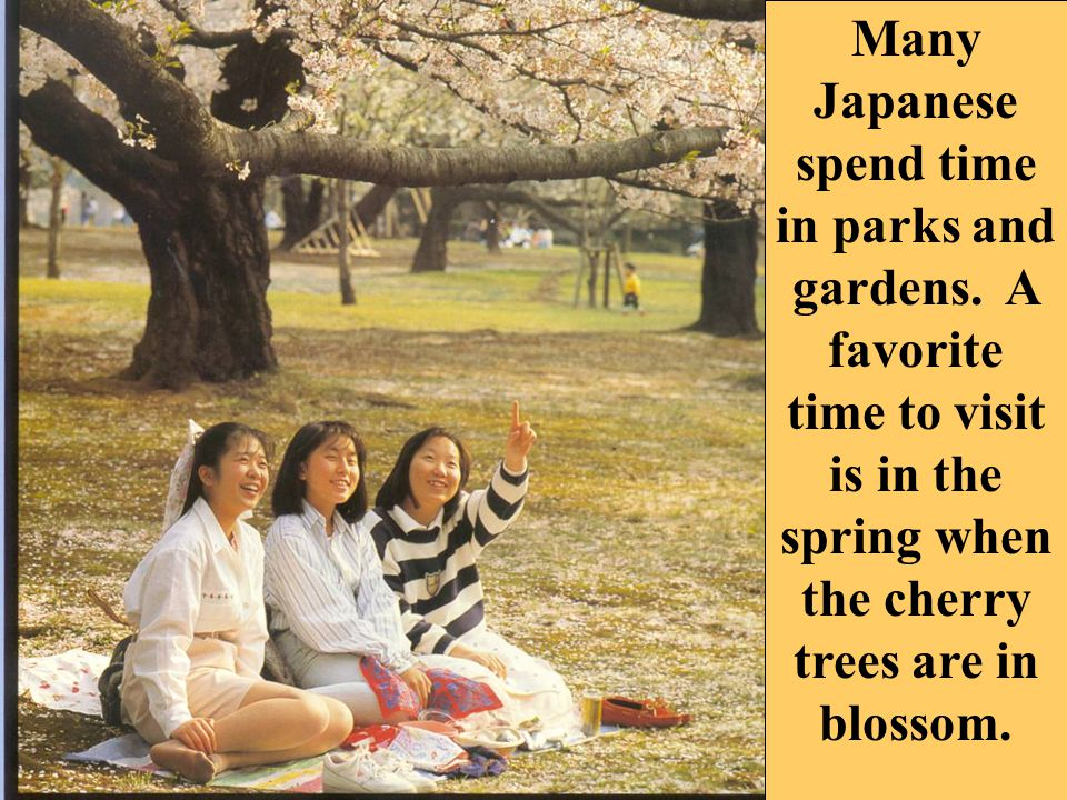 Many Japanese spend time in parks and gardens.