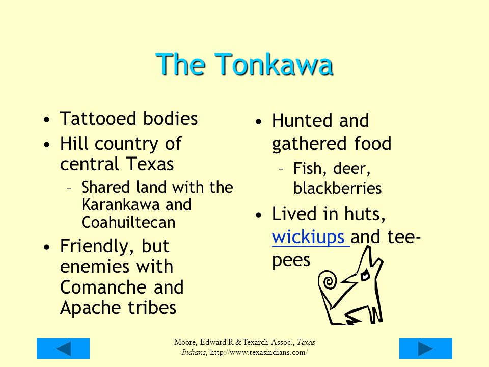 Moore, Edward R & Texarch Assoc., Texas Indians, http://www.texasindians.com/ The Tonkawa Tattooed bodies Hill country of central Texas –Shared land w