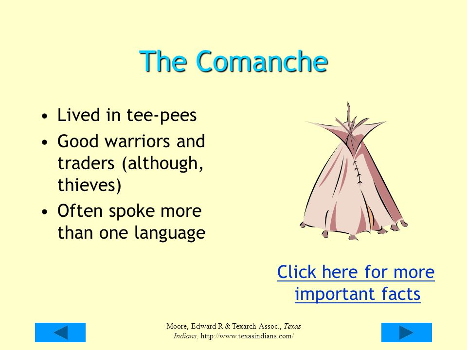 Moore, Edward R & Texarch Assoc., Texas Indians, http://www.texasindians.com/ The Comanche Lived in tee-pees Good warriors and traders (although, thie
