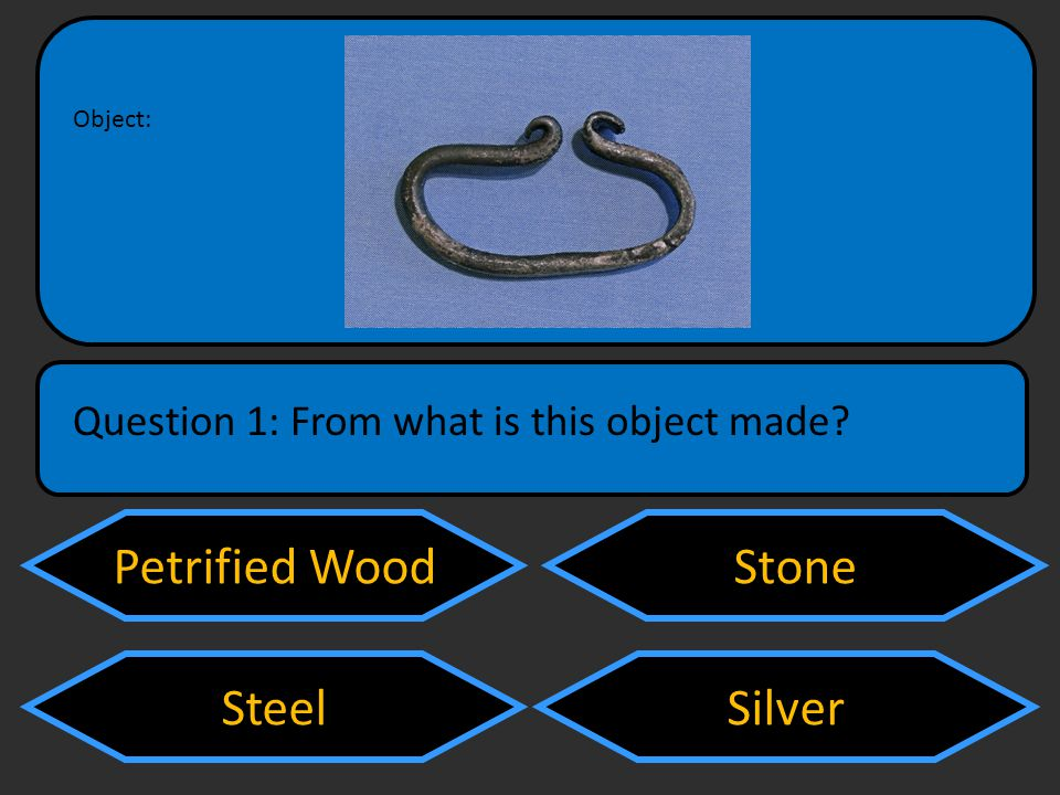Petrified Wood Steel Stone Silver Question 1: From what is this object made Object: