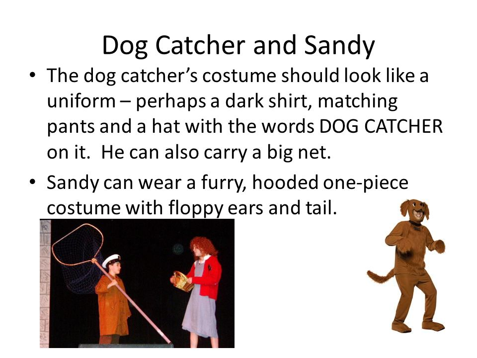 Dog Catcher and Sandy The dog catchers costume should look like a uniform – perhaps a dark shirt, matching pants and a hat with the words DOG CATCHER