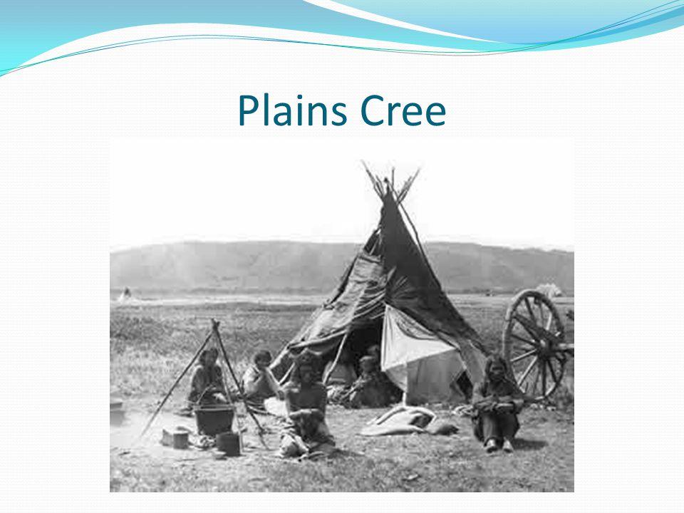 Plains Cree
