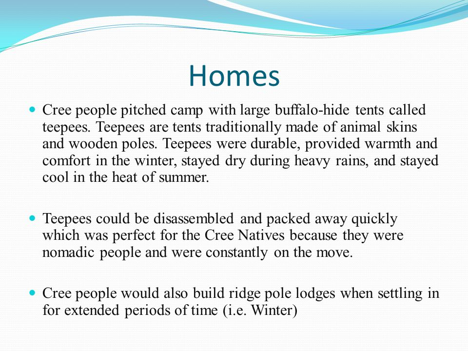 Homes Cree people pitched camp with large buffalo-hide tents called teepees.