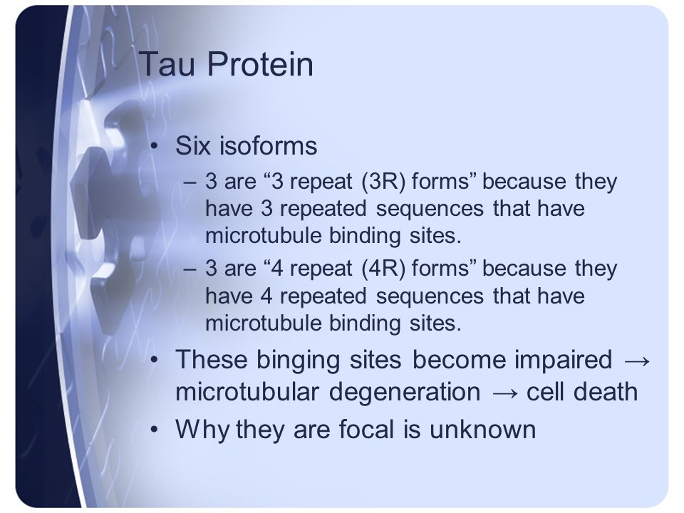 Tau Protein Six isoforms –3 are 3 repeat (3R) forms because they have 3 repeated sequences that have microtubule binding sites. –3 are 4 repeat (4R) f