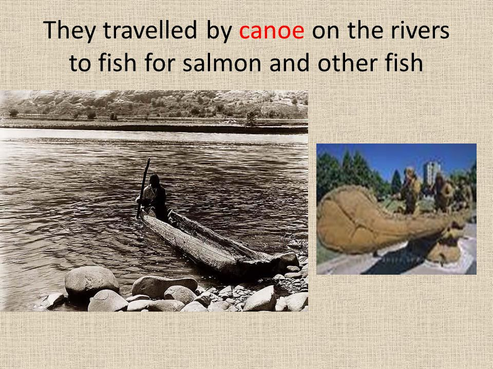 They travelled by canoe on the rivers to fish for salmon and other fish