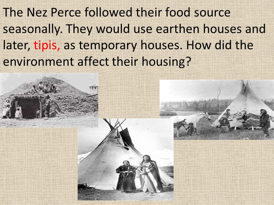 The Nez Perce followed their food source seasonally. They would use earthen houses and later, tipis, as temporary houses. How did the environment affe