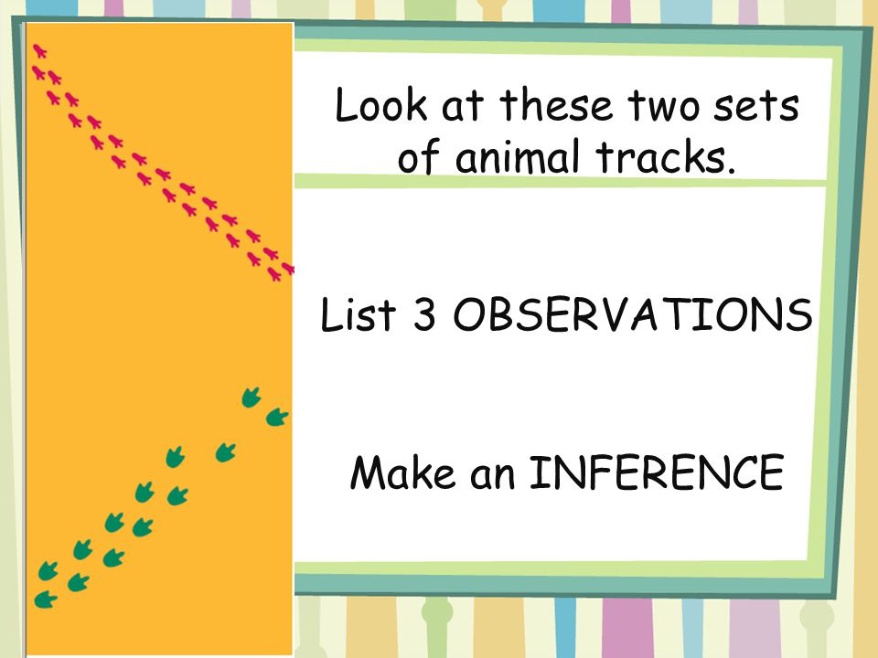 Look at these two sets of animal tracks. List 3 OBSERVATIONS Make an INFERENCE
