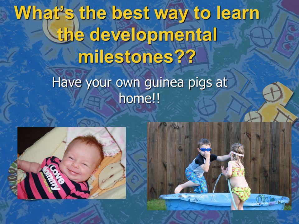 Whats the best way to learn the developmental milestones?? Have your own guinea pigs at home!!