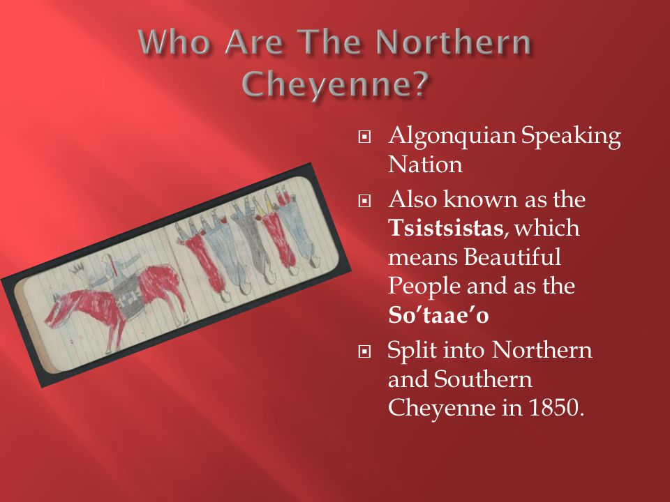 Algonquian Speaking Nation Also known as the Tsistsistas, which means Beautiful People and as the Sotaaeo Split into Northern and Southern Cheyenne in 1850.