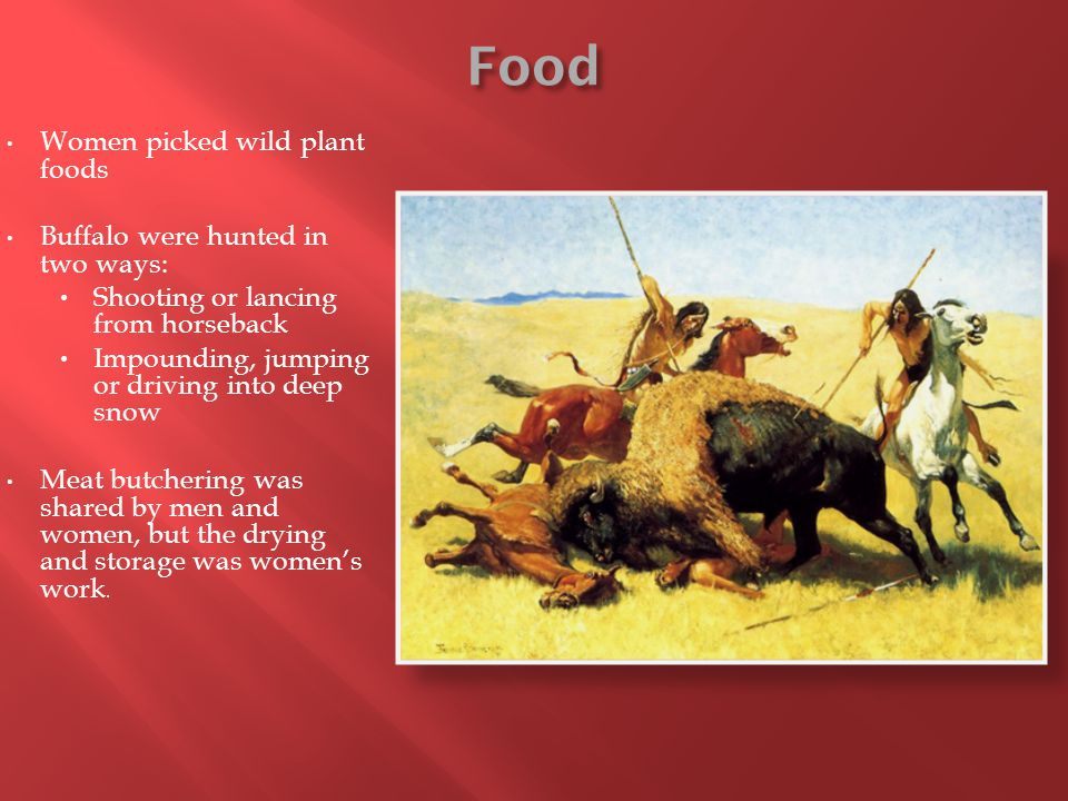 Women picked wild plant foods Buffalo were hunted in two ways: Shooting or lancing from horseback Impounding, jumping or driving into deep snow Meat butchering was shared by men and women, but the drying and storage was womens work.