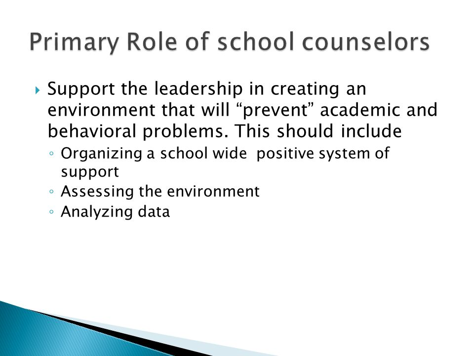 Support the leadership in creating an environment that will prevent academic and behavioral problems.