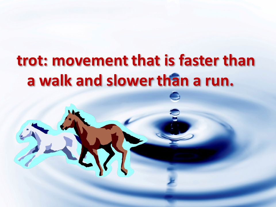trot: movement that is faster than a walk and slower than a run.